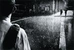 parke_summer-rain